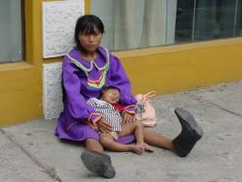 Los desplazados tienen derecho a una vivienda provisional mientras buscan su estabilidad económica.