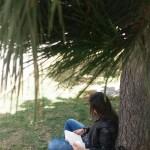 """Plan Distrital de Lectura y Escritura, """"Leer es Volar"""""""