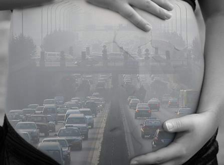 contaminacion prenatal