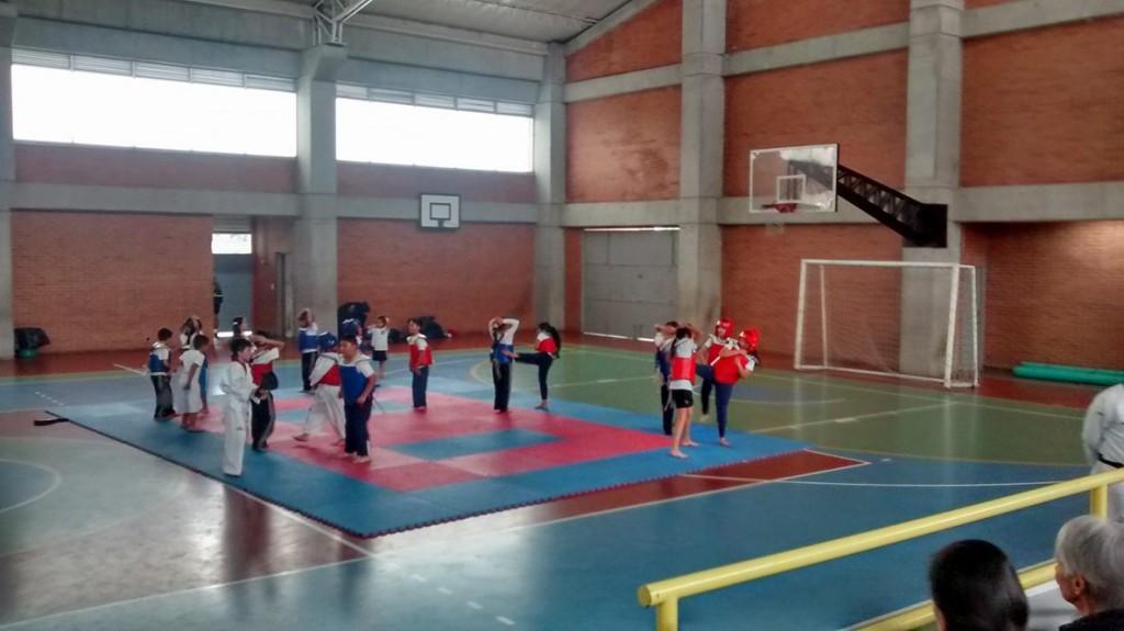 El taekwondo un deporte lleno de habilidades