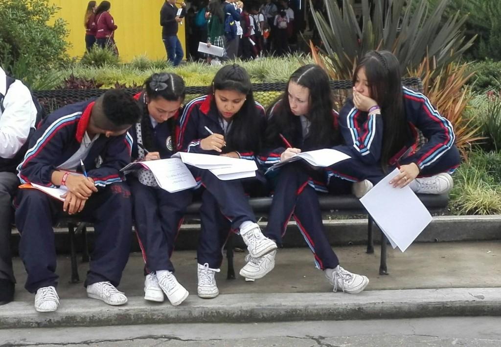 El 47% de los estudiantes de la capital no alcanzan el nivel medio de desempeño en competencia de lectura en las pruebas internacionales.