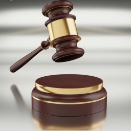términos judiciales